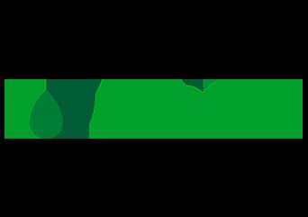 Найбільший в Україні промисловий розсадник рослин відкритого грунту